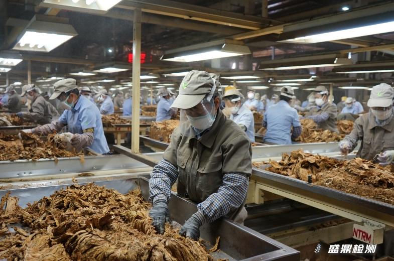 烟草加工工厂